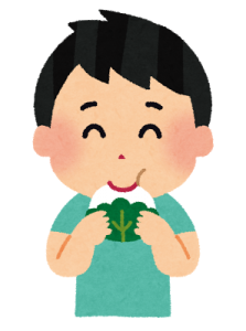 kashiwamochi_boy